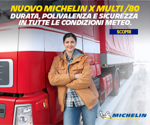 Michelin X Multi